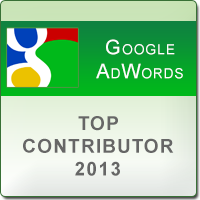 Top Contributor Badge 2013